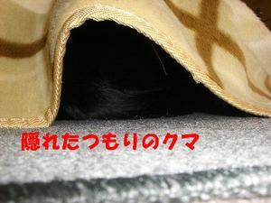 Neko17_149