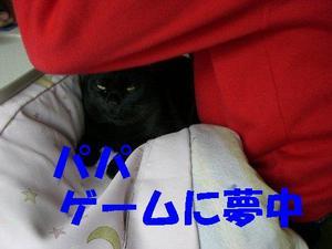 Neko18_69
