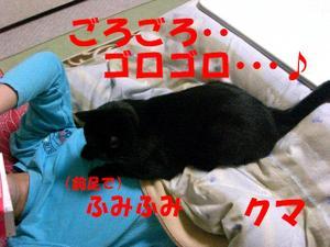Neko27_67_1