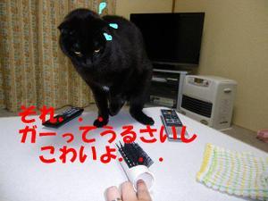 Neko30_39_1