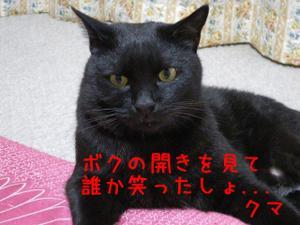 Neko36_10_1_2