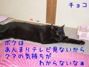 Neko35_151_1